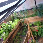 greenhouse diy plans, greenhouse structure, build your own greenhouse, window greenhouse