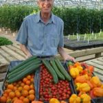 benefits growing food,colorado greenhouse kits,greenhouse,greenhouses,greenhouse kits,